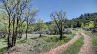 Home for sale: 1596 Upper Canyon Rd., Santa Fe, NM 87501