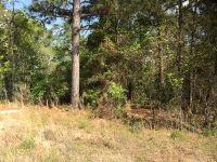 Home for sale: Lot 3 Quail Run Rd., Roberta, GA 31078