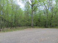 Home for sale: Yellow Birch Rd. Lot 7, Presque Isle, WI 54557