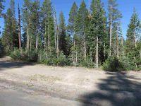 Home for sale: 8121 Soda Springs Rd., Soda Springs, CA 95728
