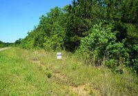 Home for sale: 0000 Dreamcatcher, Wallisville, TX 77514