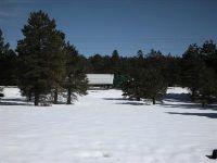 Home for sale: 0 W. Old Route 66, Bellemont, AZ 86015