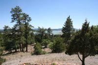 Home for sale: 20 Turkey Dr. Laguna Vista, Tierra Amarilla, NM 87575