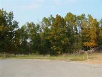 Home for sale: Lot 5 Fox Haven, Mount Vernon, MO 65712