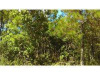 Home for sale: Off Of Xeroscape Nursery Rd., Frostproof, FL 33843
