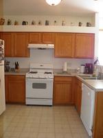 Home for sale: 1432 Plantain Dr., Minooka, IL 60447