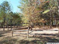 Home for sale: 16 S. County Rd. 89, Mentone, AL 35984