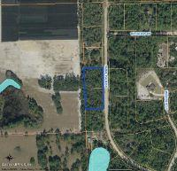 Home for sale: 107, 109 Sabal Palm Dr., Georgetown, FL 32139