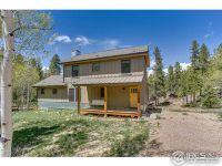 Home for sale: 82 Saint Vrain Trl, Ward, CO 80481
