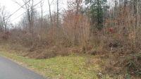 Home for sale: 1 Beech Springs Rd., Jonesville, VA 24263