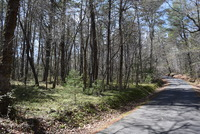 Home for sale: River Bridge Trail, Sautee Nacoochee, GA 30571