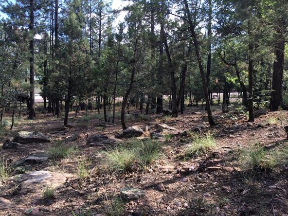 4826 Blue Spruce Ln., Lakeside, AZ 85929 Photo 5