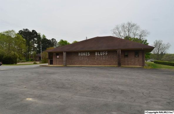 3849 E. Us Hwy. 278, Hokes Bluff, AL 35903 Photo 2