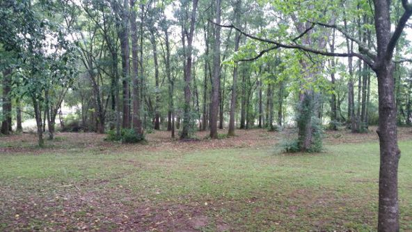 203 2nd Ave., Ashford, AL 36312 Photo 33