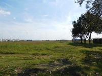 Home for sale: 11.5 Acres E. Highland Dr., Jonesboro, AR 72401