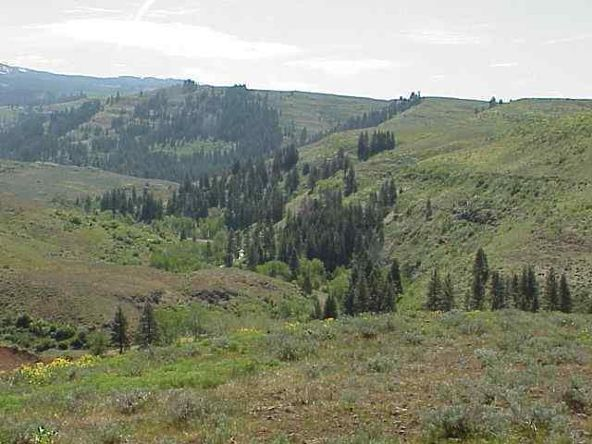 Lot 1 Middle Fork Rd., Council, ID 83612 Photo 3