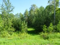 Home for sale: Lot #6 Prentic Heights Blvd., Ashland, WI 54806