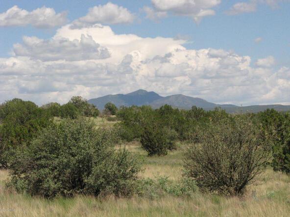 206e Bixler Trail, Ash Fork, AZ 86320 Photo 1
