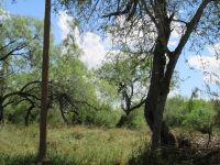 Home for sale: 974 S. Kika de la Garza, La Joya, TX 78560