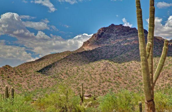 2623 N. Brice --, Mesa, AZ 85207 Photo 5