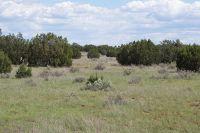 Home for sale: 3795 Bum Heel Ranch Rd., Snowflake, AZ 85937