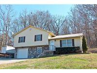 Home for sale: 643 Ellison Dr., Newport, TN 37821