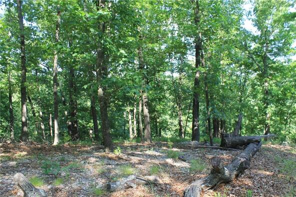 815 Mundell Rd., Eureka Springs, AR 72631 Photo 4