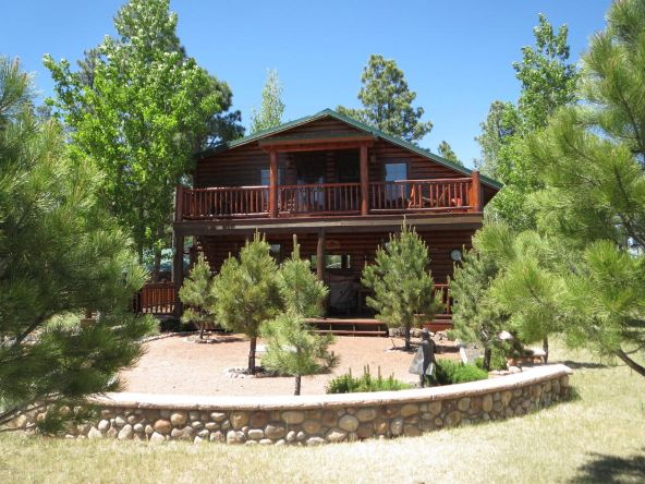 2295 Bison Ranch Trail, Overgaard, AZ 85933 Photo 49