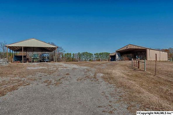 314 Neel School Rd., Danville, AL 35619 Photo 28