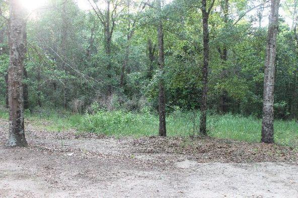 30191 Hollinger Creek Dr., Robertsdale, AL 36567 Photo 19