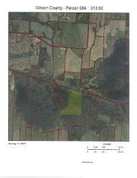 Home for sale: 0 Forked Deer River, Trenton, TN 38382