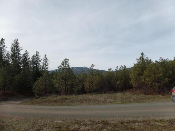 Lot 70 Sherman View Way, Kettle Falls, WA 99141 Photo 12