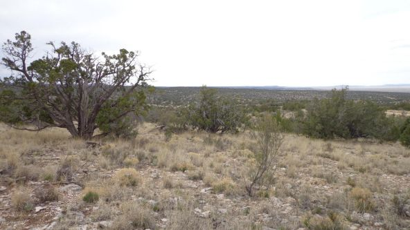 952 Bridge Canyon Unit 5 Lot 952, Seligman, AZ 86337 Photo 11