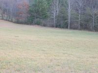 Home for sale: Tbd Red Stone Rd., Chilhowie, VA 24319