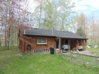 Home for sale: 2165 Loree Rd., Applegate, MI 48401