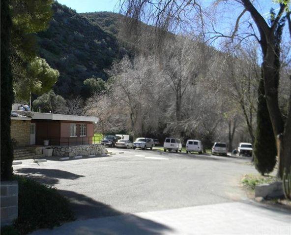 13136 Sierra, Agua Dulce, CA 91390 Photo 6