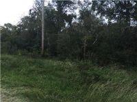 Home for sale: 20228 C R 510, Brazoria, TX 77422
