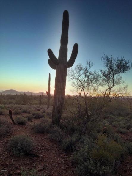 41000 N. 7th St., Phoenix, AZ 85086 Photo 17
