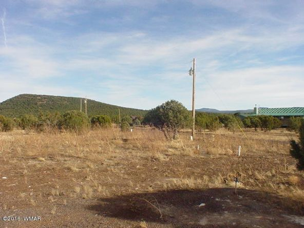 7 Apache County Rd. N3464, Vernon, AZ 85940 Photo 6