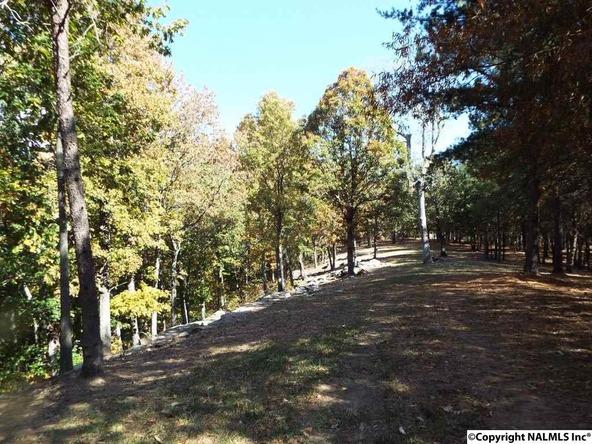 12 S. County Rd. 89, Mentone, AL 35984 Photo 23