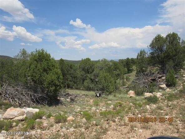 1423 Sierra Verde Ranch, Seligman, AZ 86337 Photo 9