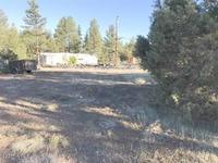 Home for sale: 2953 Deer Trail, Lakeside, AZ 85929