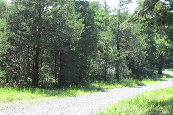 3.5 Acres Ravine Rd. & Mocking Bird Ln., Tumbling Shoals, AR 72581 Photo 5