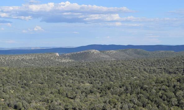 76+83+92 Shadow Rock Ranch, Seligman, AZ 86337 Photo 27