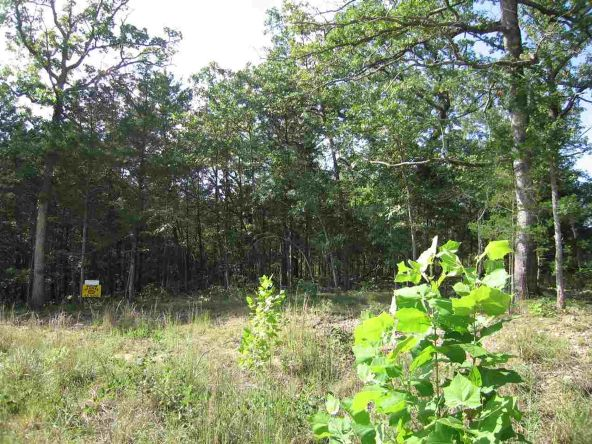 Lot 15 Sargent Pepper Dr., Flippin, AR 72634 Photo 2