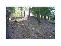 Home for sale: 28737 Potomac, Lake Arrowhead, CA 92352