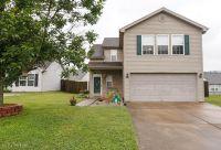 Home for sale: 11207 Woodridge Lake Way, Louisville, KY 40272