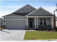 Home for sale: 360 Blue Sage Rd., Panama City Beach, FL 32413