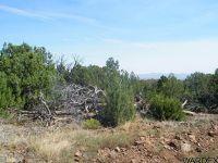 Home for sale: Lot 656 N. Edge Ridge Rd., Seligman, AZ 86337