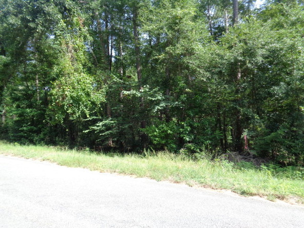 6 Lots Pinedale Dr., Abbeville, AL 36310 Photo 2